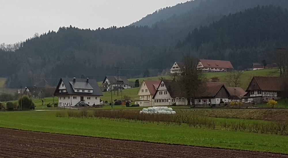 frei museum schwarzwald